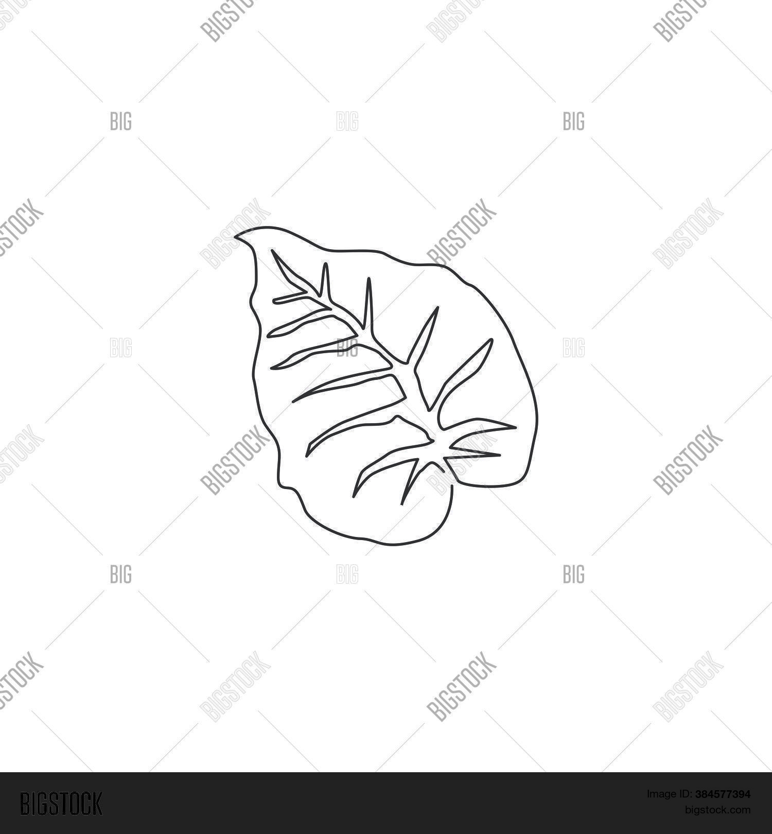 One Continuous Line Vector Photo Free Trial Bigstock Find over 100+ of the best free tropical leaves images. one continuous line vector photo