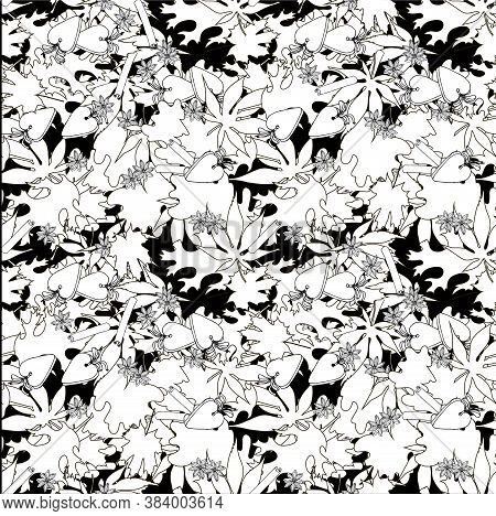 Leaves Monochrome Seamless Pattern. Maple Oak Leaves Background. Coloring Page Art Autumn Design Sto