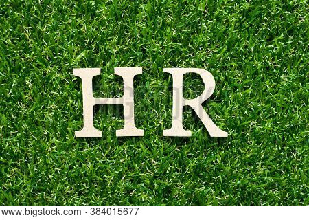 Wood Alphabet Letter In Word Hr (abbreviation Of Human Resource) On Green Grass Background