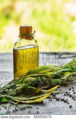 Hemp Oil Bottle And Cannabis Plant On Wooden Table