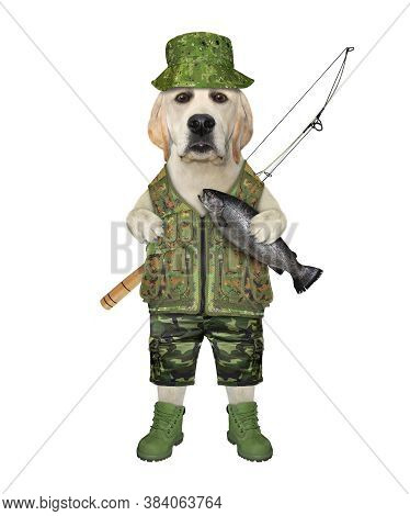 A Dog Fisher In An Uniform With A Fishing Rod Holds The Caught Fish.  White Background. Isolated.