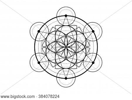 Seed Of Life Symbol Sacred Geometry Tattoo.  Geometric Mystic Mandala Of Alchemy Esoteric Flower Of