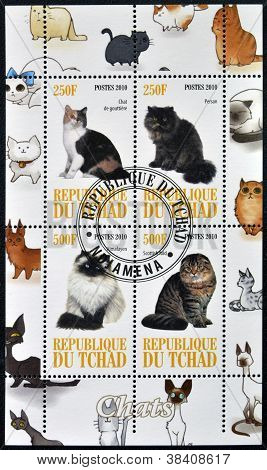 CHAD - CIRCA 2010: A stamp printed in Republic of Chad shows different cat breeds serie circa 2010
