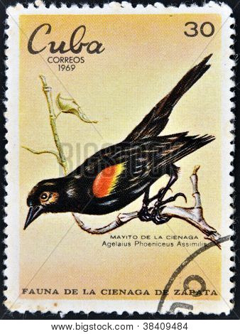 CUBA - CIRCA 1969: A stamp printed in cuba dedicated to fauna of the Zapata swamp shows bobolink the