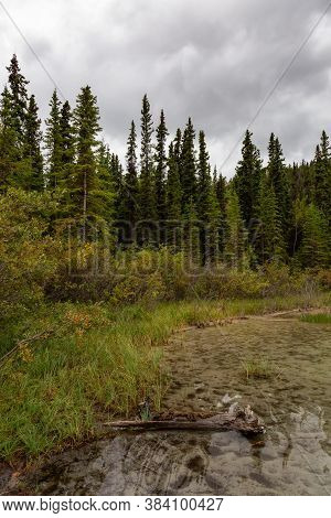 Beautiful View Of Emerald Lake During A Cloudy Summer Day. Located Near Whitehorse, Carcross, Yukon,