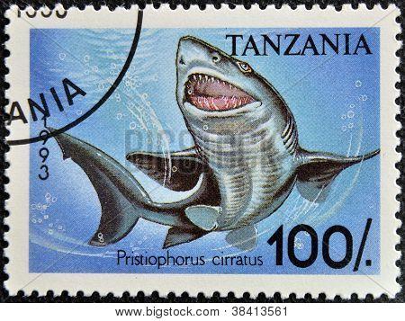 TANZANIA - CIRCA 1995: A stamp printed in Tanzania showing Longnose sawshark circa 1995