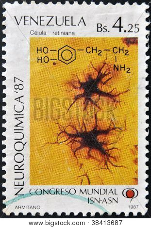 VENEZUELA - CIRCA 1987: A stamp printed in Venezuela dedicated to World Congress of Neurochemistry s