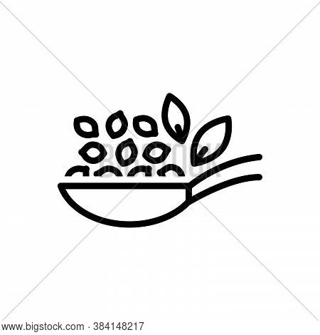 Black Line Icon For Thymol-seed Thymol Seed Caraway Ajowan Seed Herbal Condiment Spice Flavor Ingred