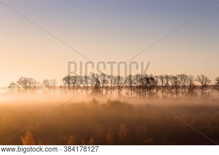 Autumn foggy morning landscape. Foggy forest and meadow. Sunrise in fog forest in autumn. Fog city and trees in october landscape