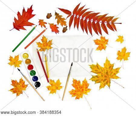 Beautiful Autumnal Maple Leaves, Red Leaves Oak, Acorns, Leaves Staghorn Sumac, Pencils, Brush, Pain