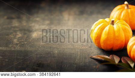 Orange Pumpkins On A Dark Wooden Background, Copy Space