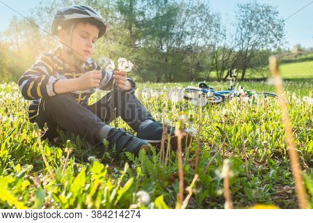 Child with a bouquet of dandelions sitting on grass in park. Boy going wearing safe bicycle helmets. Kid biking on sunny summer day. Active healthy outdoor sport. Fun activity.