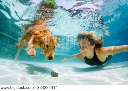 Underwater Action. Young Woman Play With Fun, Training Golden Retriever Puppy In Swimming Pool - Jum