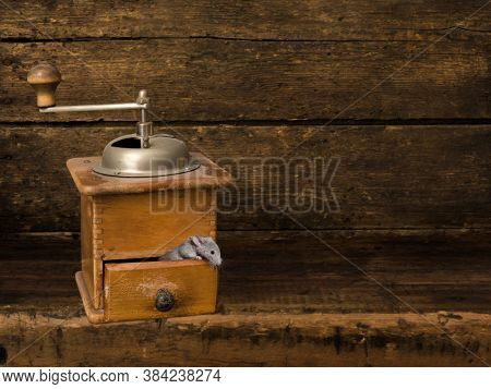 Digital backdrop for composite images of an antique wooden shelf with a coffee grinder and a living mouse