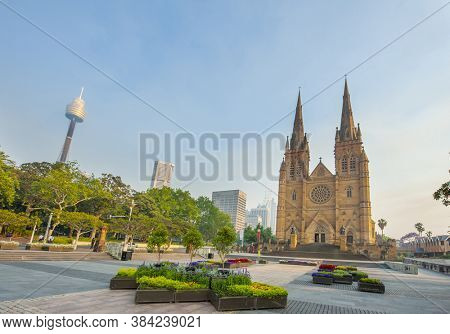St. Mary's Cathedral in Sydney seen from Cook Philip Park. Australia