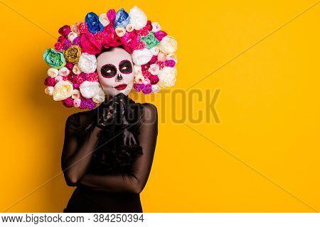 Portrait Of Her She Nice-looking Beautiful Glamorous Curious Lady Santa Muerte Art Pondering Creatin