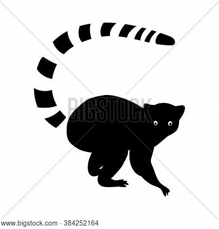 Lemur Black Sealeet. Exotic Tropical Animal On A White Isolated Background. Cute Funny Lemur With A