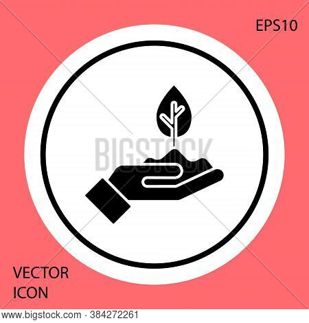 Black Plant In Hand Of Environmental Protection Icon Isolated On Red Background. Seed And Seedling.