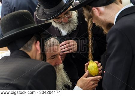 JERUSALEM, ISRAEL - SEPTEMBER 20, 2018: Religious Jews choose etrog-fruit of  magnificent tree. Traditional fair of ritual plants on the eve of Sukkot. The concept of religious and photo tourism