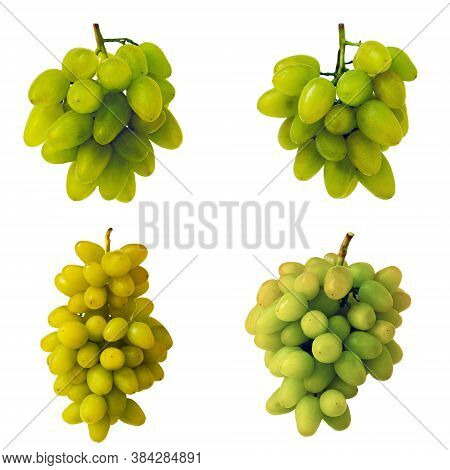 White Grapes. Grapes Of Various Grades. Bunch Of Green Grapes. Ripe Grapes In Harvest Season. Organi
