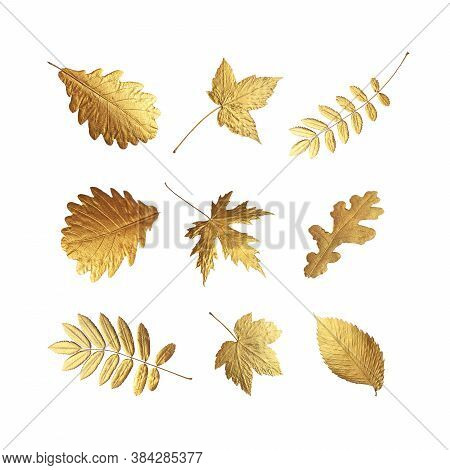 Golden Flying Autumn Leaves Of Different Shapes Isolated On White Background. Autumn Concept, Fall B