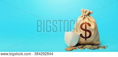 Dollar Money Bag And Protection Shield. Guarantee Of Protection Of Means Of Savings And Investments.
