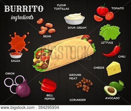 Mexican Burrito Ingredients. Mexican Cuisine Meal With Sour Cream, Tomatoes And Lettuce, Chili Peppe