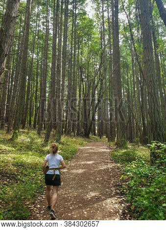One Woman Hiking Trekking On A Dirt Path Trail  Through A Lush Green Forest. Active Lifestyle. Activ