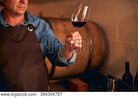 Male Winemaker Holding Glass Of Red Wine