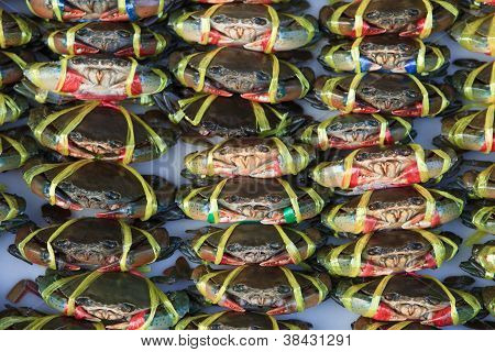 file of live crabs ready to be cooked in a market poster