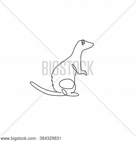 Single Continuous Line Drawing Of Cute Standing Ferret For Company Logo Identity. Domestic Animal Ma