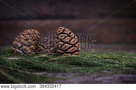 Christmas Sequoia Cones On Coniferous Branches On A Wooden Background.