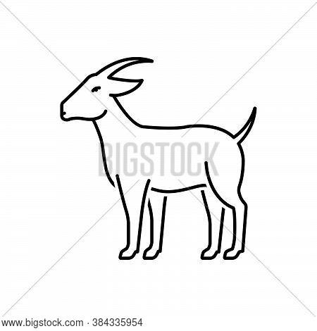 Black Line Icon For Goat Billy-goat Ewe Cattle Herbivorous Capra Hoof Horned Domestic Pet Animal