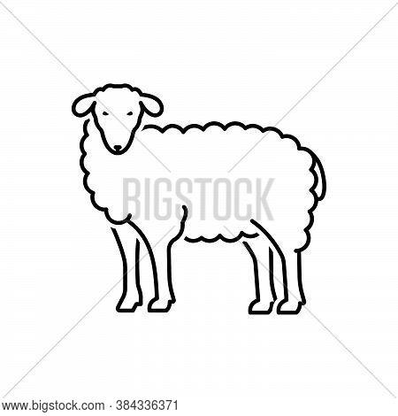 Black Line Icon For Sheep Ewe Cattle Farm Give Wool Lamb Ovis Herd Herbivorous Hoof Horned Pet Anima