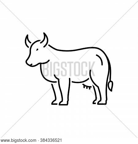 Black Line Icon For Cow Bossy Livestock Useful Dairy Cattle Give-milk Milk Farm Heifer Breef Agricul