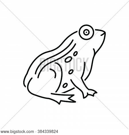 Black Line Icon For Frog Toad Batrachian Salientian Amphibian Animal Jumping Tadpole Croaking