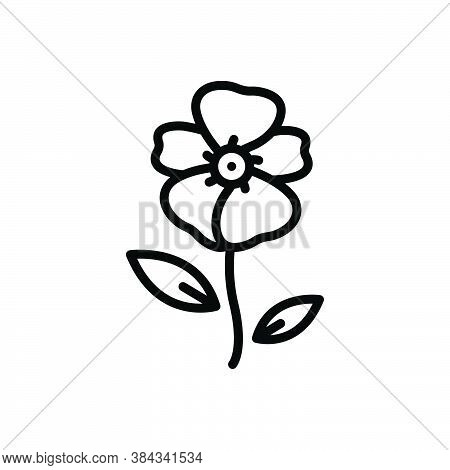 Black Line Icon For Balsam Smear Ointment Fragrance Impatiens Blossom Flower Botanical Delicate Crim