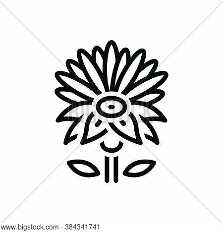 Black Line Icon For Blue-water-lily Lily Lilium Martagon Water Meditation Aquatic Lotus Natural Flow