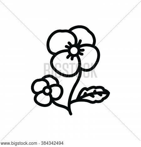 Black Line Icon For Pansy Ladylike Florist Spring Petals Fragrance Flower Blossom Botanical Delicate