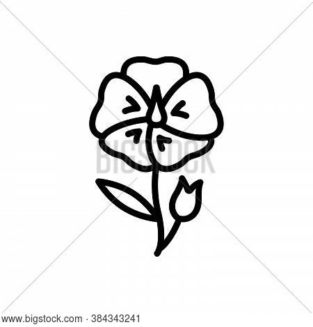 Black Line Icon For Flax-flower Linseed Wildflower Autumn Ingredient Blooming Natural Flower Botanic