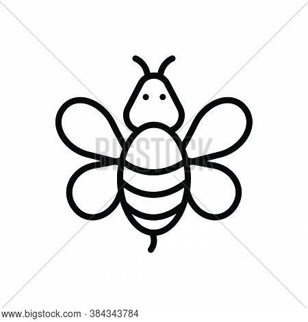Black Line Icon For Bee Honeybee Honey Wasp Fly Bug Bumblebee Hive Nature Animal Insect