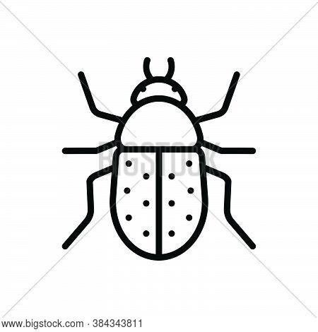 Black Line Icon For Beetle  Bug Fly Prejudicial Insect Grasshopper Cricket Colorado Harmful Bumblebe