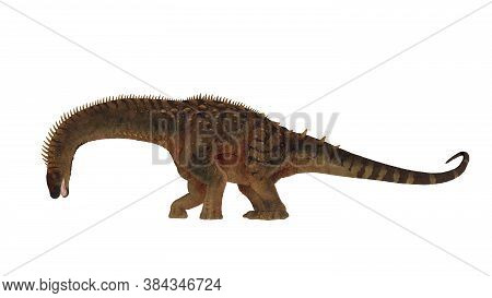 Alamosaurus Dinosaur Head Down Eating Isolated In White Background - 3d Render