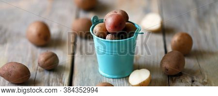 Small Raw Potatoes In A Bucket. A Bucket Of Potatoes. Baby Potatoes. Rustic Style. Potato Harvest Co