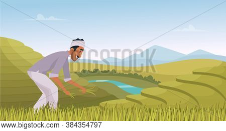 Indian Agriculture Landscape. Farmer Working In Indian Rice Fields Rural Worker Vector Cartoon Backg