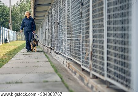 Female Officer With Security Dog Walking By Locked Cages