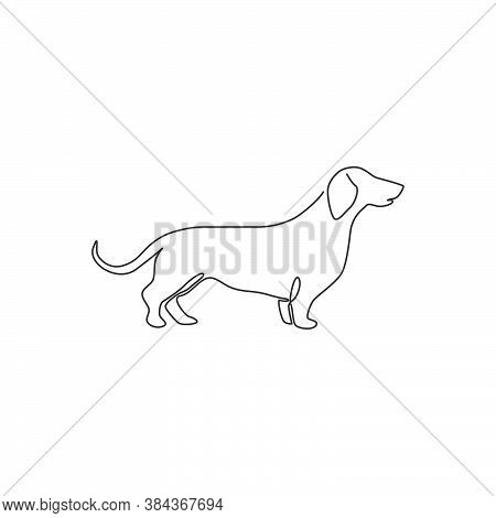 One Continuous Line Drawing Of Adorable Dachshund Dog For Logo Identity. Purebred Dog Mascot Concept