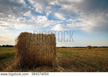 Straw Bales On Farmland With Blue Cloudy Sky. Farmers Field After Harvesting Wheat. Wheat Straw In R