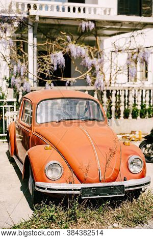 Zabljak, Montenegro - 23 July 2020: Red Retro Car Volkswagen Kafer - Beetle - A Passenger Car Manufa