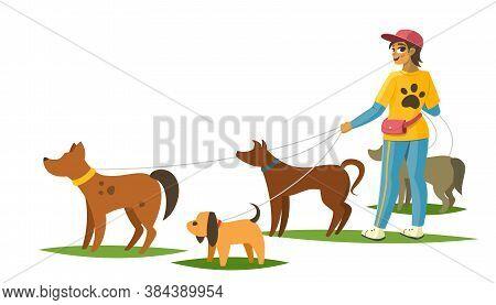 Dog Walker With Dogs Banner, Vector Illustration